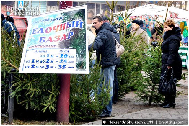 Елочный базар на Гоголя