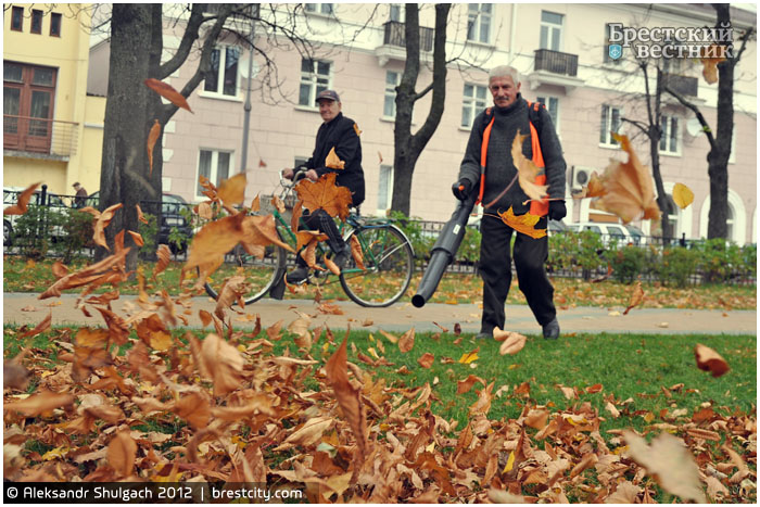 Уборка осенней листвы в Бресте