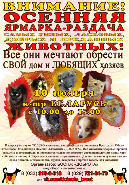 Ярмарка-раздача животных в Бресте