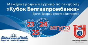 Кубок Белгазпромбанка по гандболу 2013