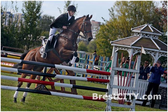 Областные соревнования по конному спорту в Бресте