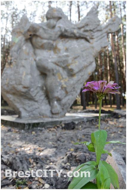 Памятник воинам-интернационалистам в Бресте