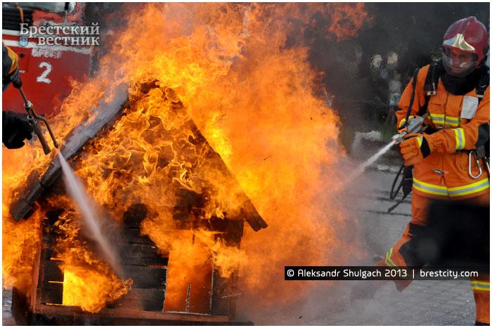 МЧС тушит горящий дом в центре парка