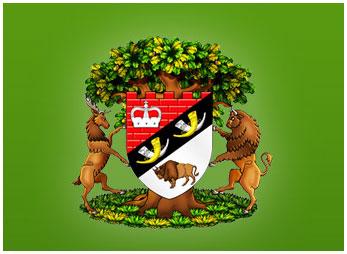 Герб (логотип) Беловежской пущи
