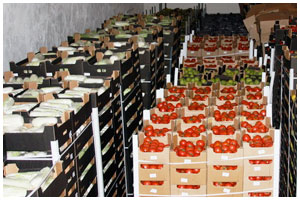 100 тонн овощей изъято на границе в Бресте