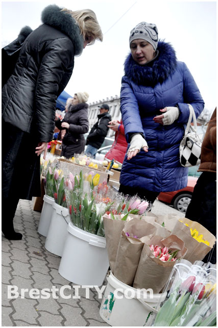 Продажа цветов в Бресте к 8 марта 2014