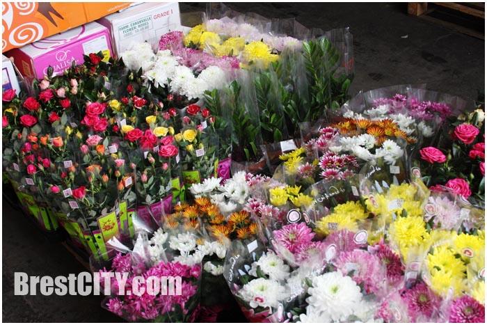 Тысячи цветов изъяты на границе в Бресте