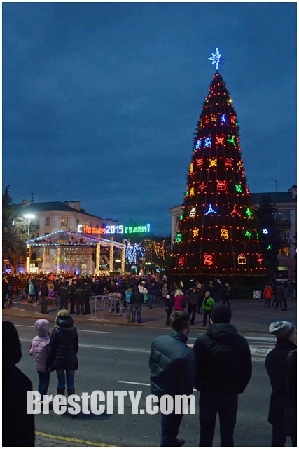В Бресте зажгли главную городскую елку