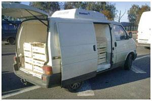 Нелегальная перевозка малины в бусе