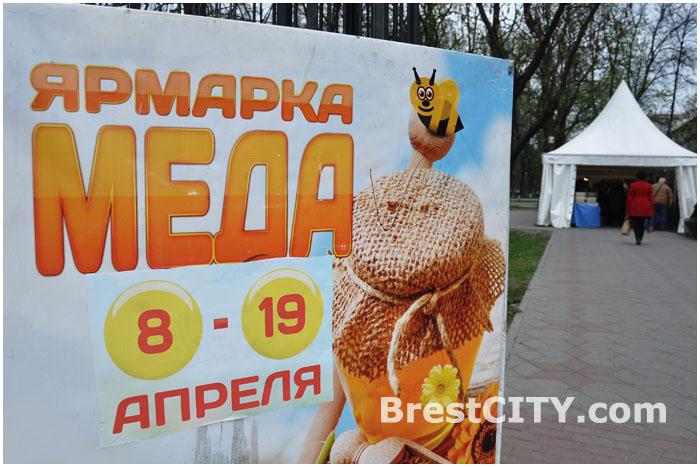 Ярмарка меда на Советской в Бресте
