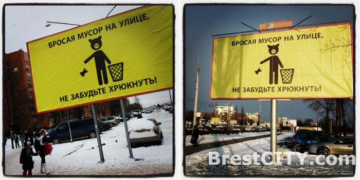Билборды с хрюшей на улице города