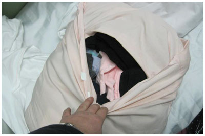 Попытка перевоза одежды в поезде через границу. Подушка
