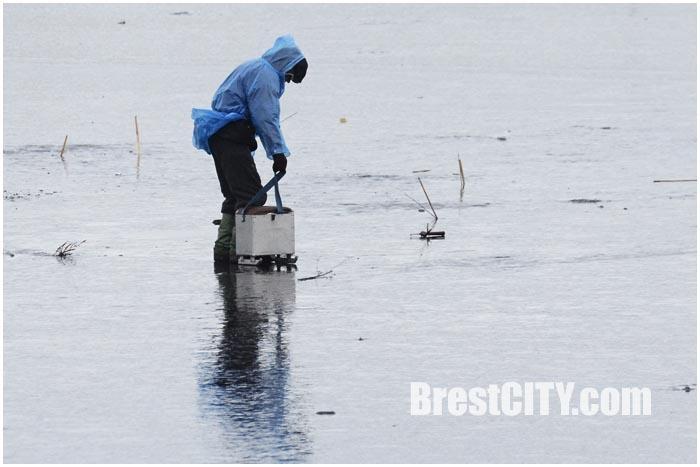 Зимняя рыбалка на Гребном канале в Бресте