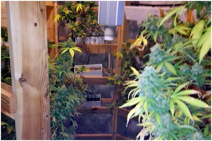 Нарколаболатория в квартире у брестчанина