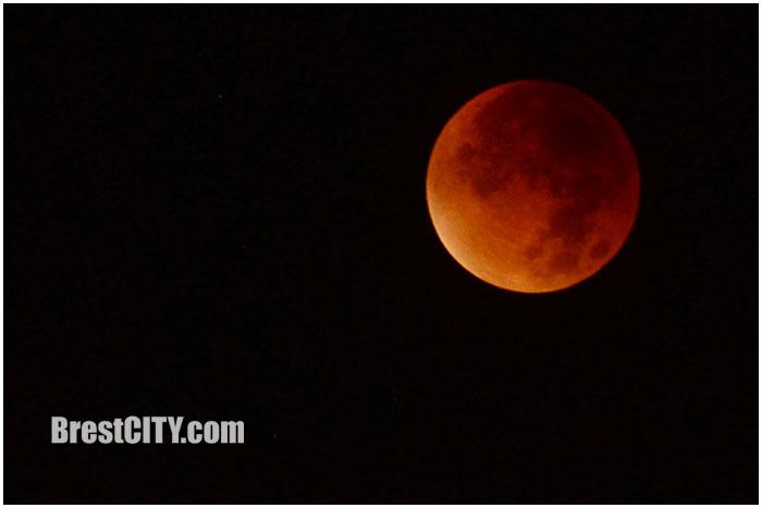 Лунное затмение 28 сентября 2015 в Бресте. Фото BrestCITY.com