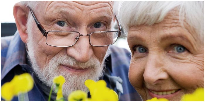 День пожилых людей. Бабушки и дедушка. Радость