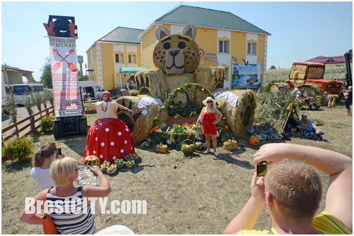 Мотольские прысмаки 2015 в Ивановском районе