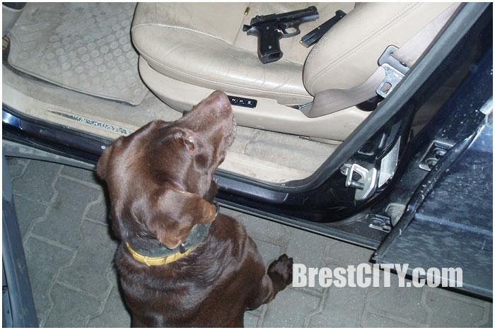 Арсенал оружие изъят на границе в Бресте