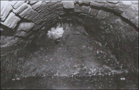 Ход в замке Вишневецких. Из фонда Музея белорусского Полесья.