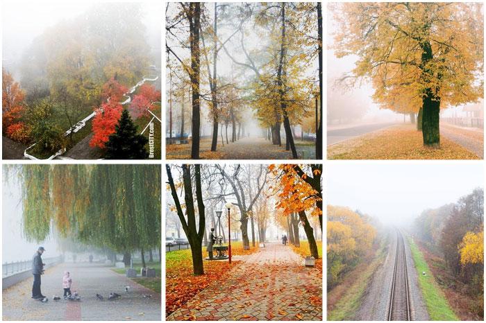 Туман в Бресте. Красивые фотографии