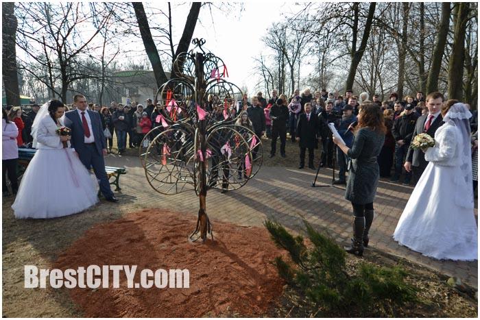 Дерево любви установили в брестском парке.
