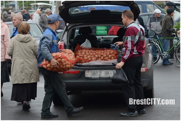 Осенняя ярмарка в Бресте 2015. Цены на продукцию
