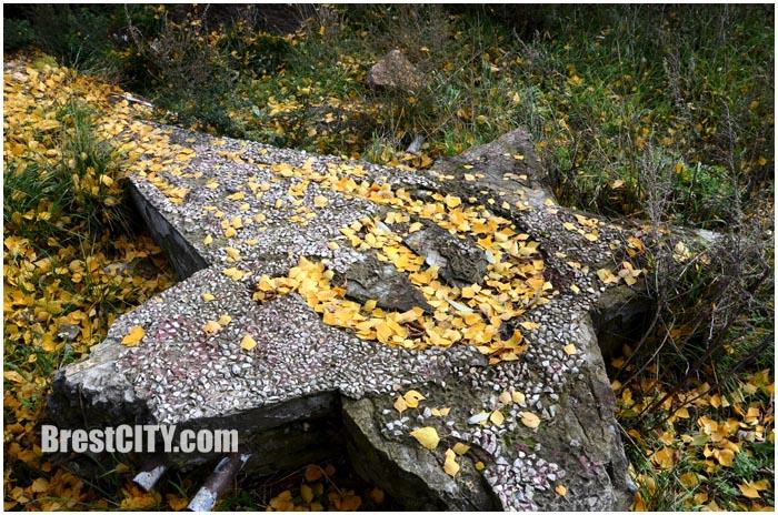 Брест. Осень. Звезда. Серп и молот. Фото BrestCITY.com