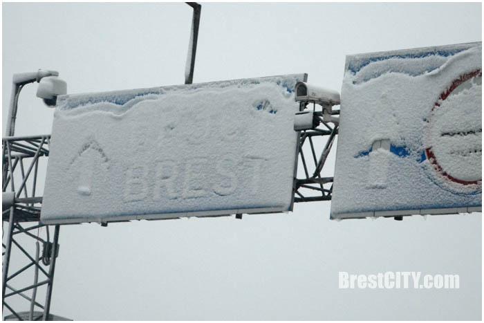 Первый снег в Бресте. 9 ноября 2016. Фото BrestCITY.com