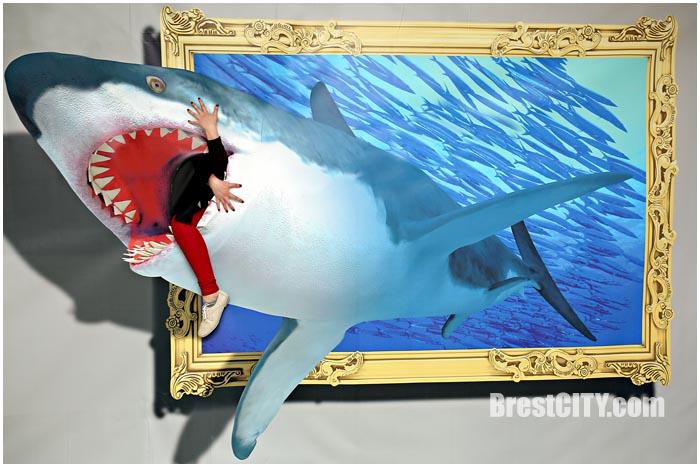 Выставка 3D картин в Бресте. ДК Профсоюзов