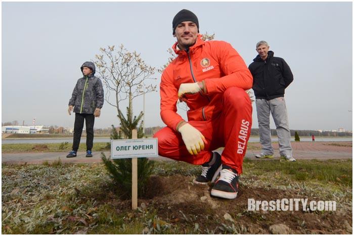 Символическая Аллея чемпионов заложена на брестском Гребном канале. Фото BrestCITY.com