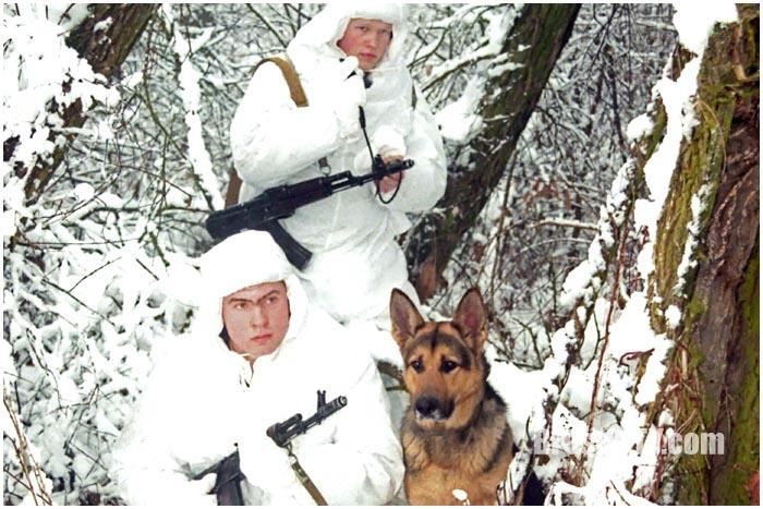Пограничники зимой с собакой