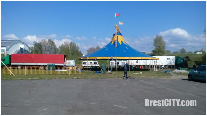 Цирк Арена в Бресте возле ЦМТ. 2016