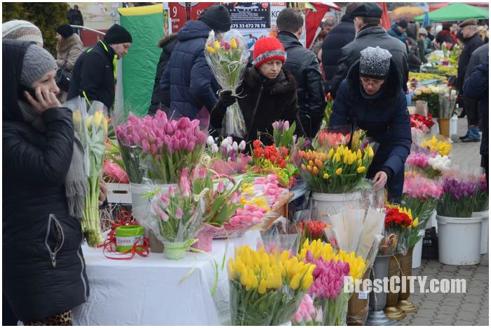 Продажа цветов к 8 марта в Бресте. Тюльпаны и мимозы. Фото BrestCITY.com