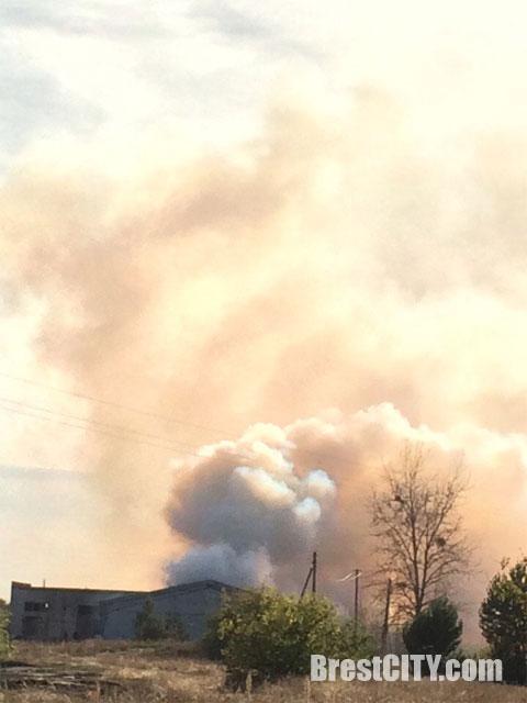 В Дивине сгорело 40 тонн соломы