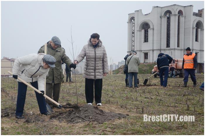 Городской субботник в парке Тысячелетия Бреста. Фото BrestCITY.com