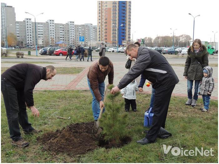 Дерево доброты высадили на Гребном. Фото BrestCITY.com