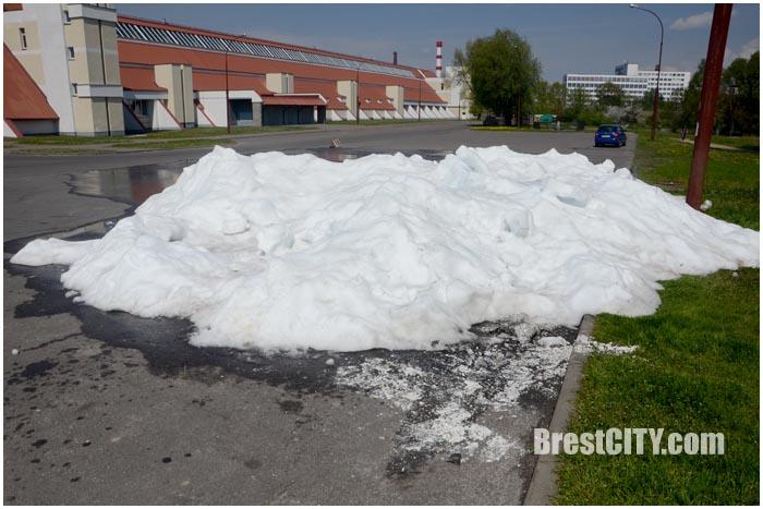 Майский снег в Бресте. Фото BrestCITY.com