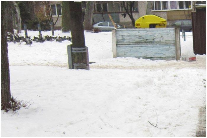 Мусорка. Зима