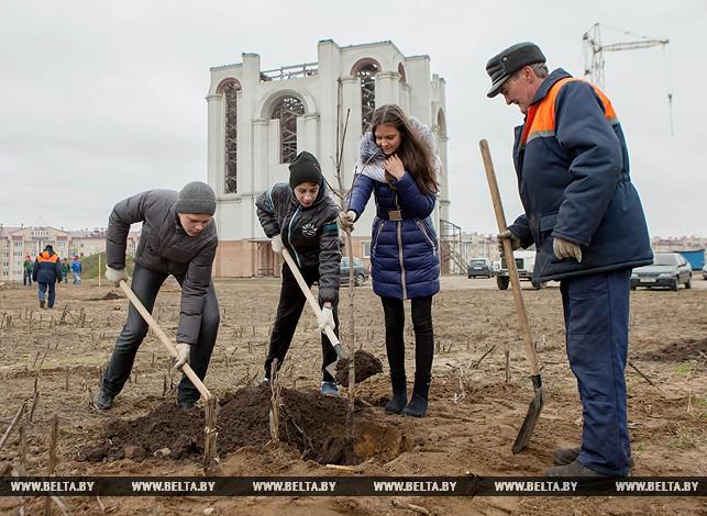 Парк тысячелетия Бреста заложен на Вульке