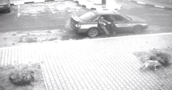 Убийство пенсионерки, грабеж на автозаправке