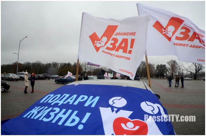 Автопробег за жизнь без абортов в Бресте. Фото BrestCITY.com