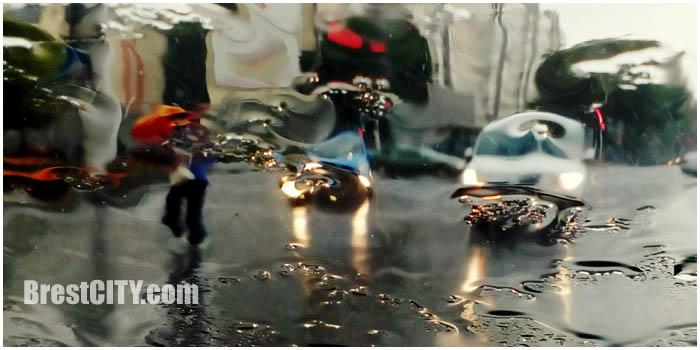 Дождь в Бресте. Фото BrestCITY.com