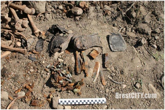 В деревне Оберовщина обнаружены человеческие останки