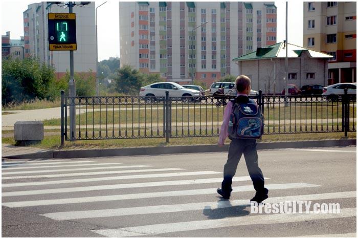 Школьник переходить дорогу. Фото BrestCITY.com