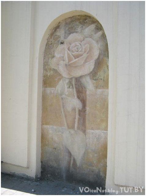 Роза в арке на ул.Комсомольской в Бресте. Фото BrestCITY.com