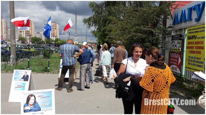 Сбор подписей за кандидатов в Бресте. Выборы 2016