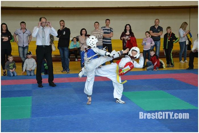 Фестиваль единоборств в Бресте 14 мая 2016