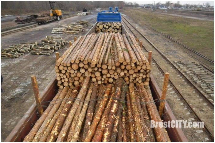 Спрятанные сигареты в вагоне с древесиной