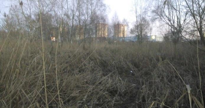 Труп пропавшей учительницы обнаружен возле реки Мухавец в Бресте