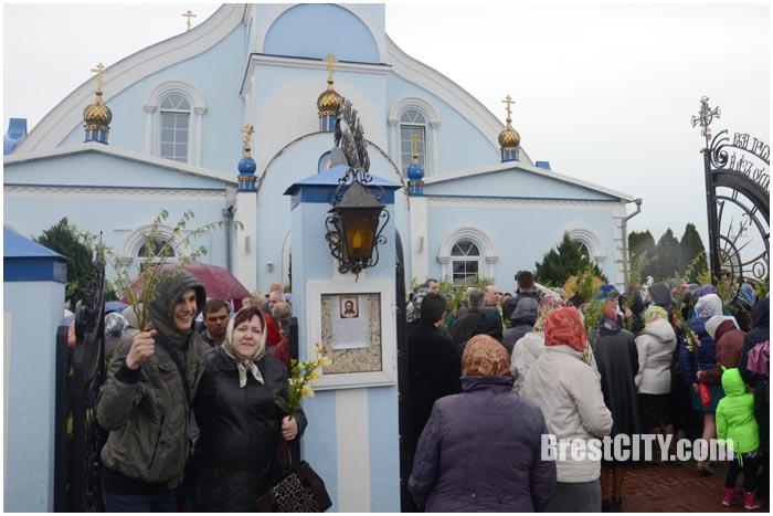 Вербное воскресенье в Бресте 24 апреля 2016. Фото BrestCITY.com